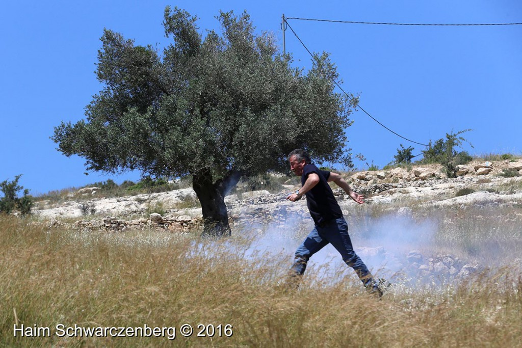 Nabi Saleh 29/04/2016 | IMG_8395