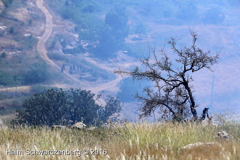 Nabi Saleh 29/04/2016 | IMG_8425