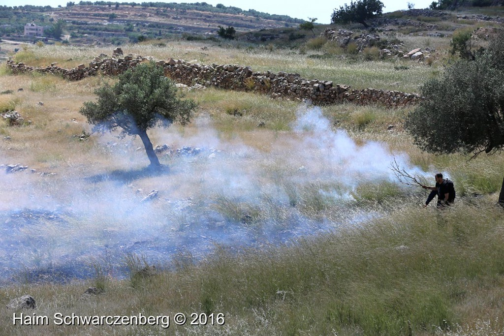 Nabi Saleh 29/04/2016 | IMG_8430