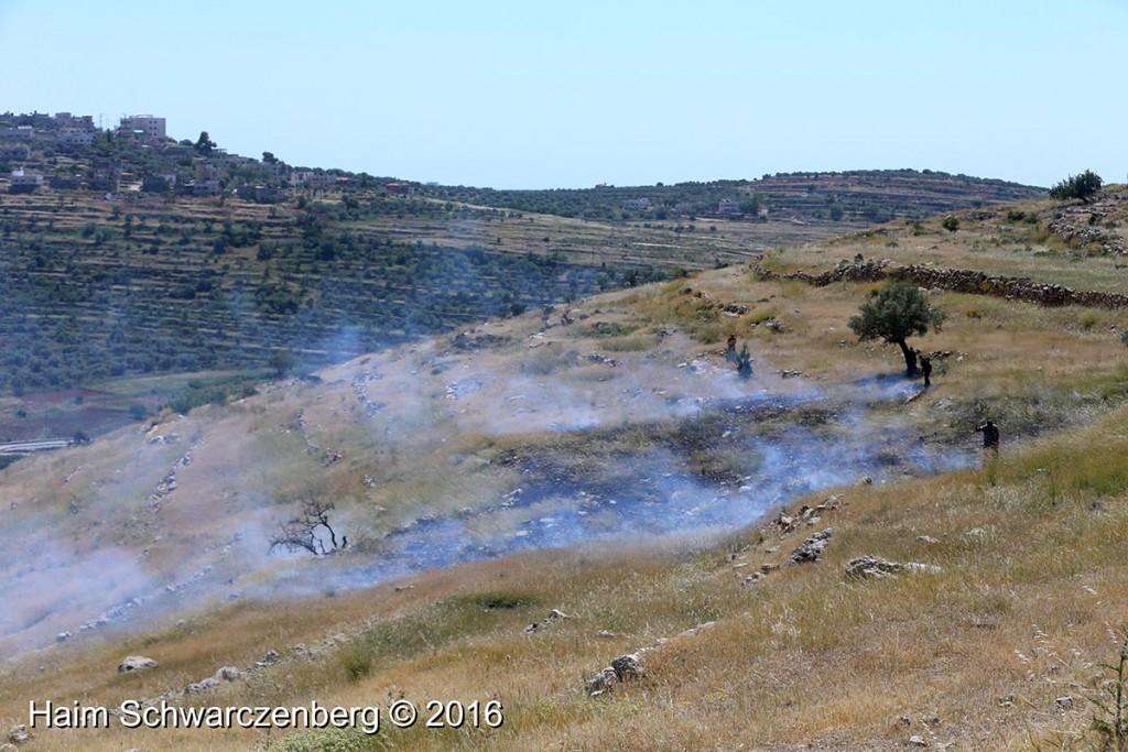 Nabi Saleh 29/04/2016 | IMG_8441