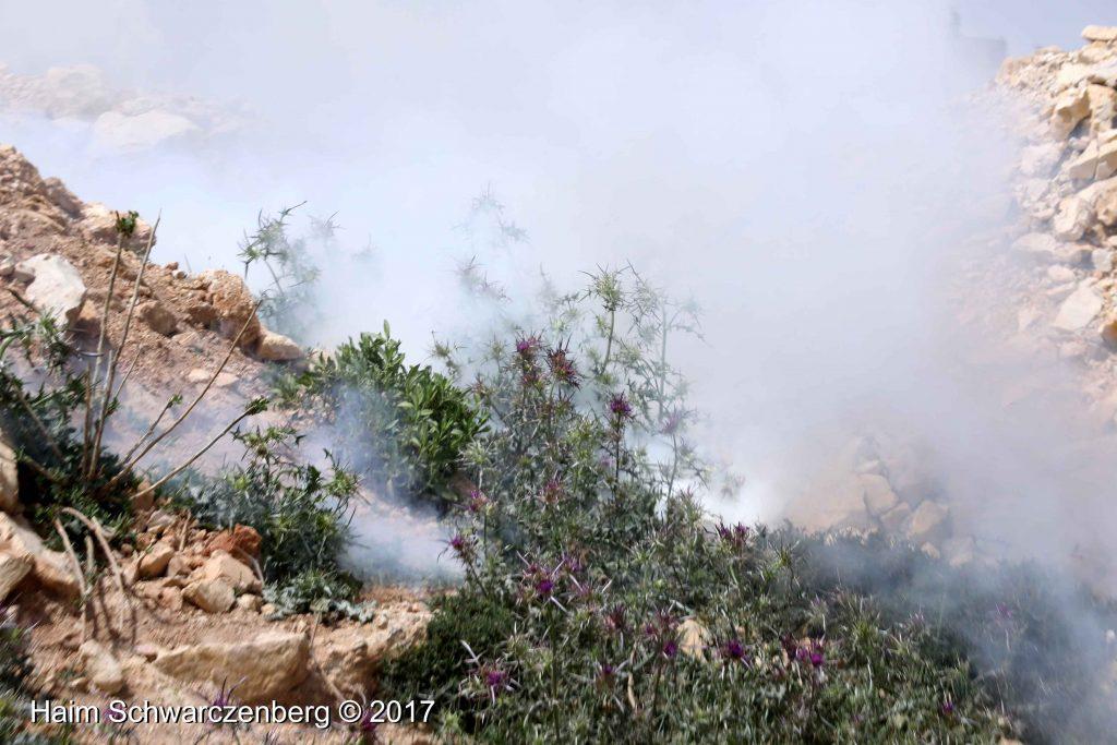 Nabi Saleh 21/04/2017 | FW7A2763
