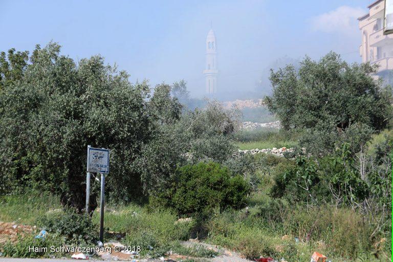 Nabi Saleh 06/04/2018 | FW7A5247