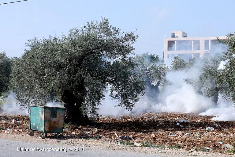 Nabi Saleh 06/04/2018 | FW7A5290