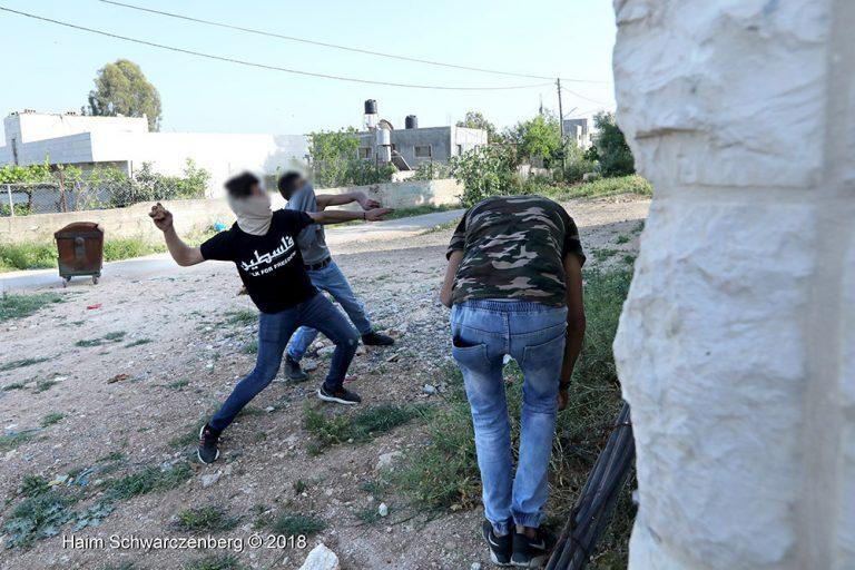 Nabi Saleh 06/04/2018 | FW7A5600