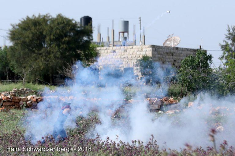 Nabi Saleh 13/04/2018 | FW7A6959