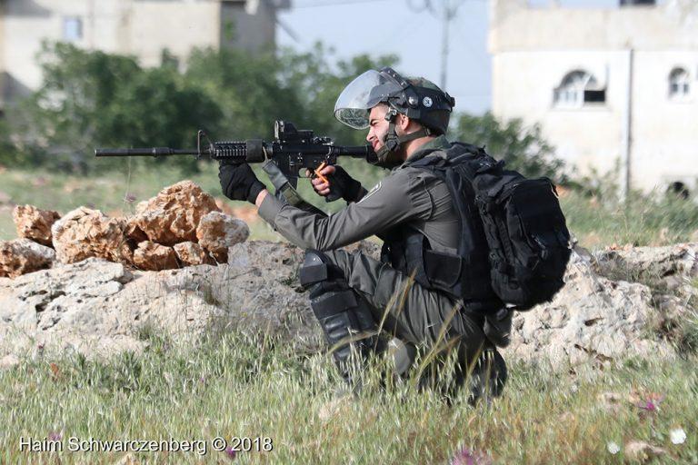 Nabi Saleh 13/04/2018 | FW7A7184