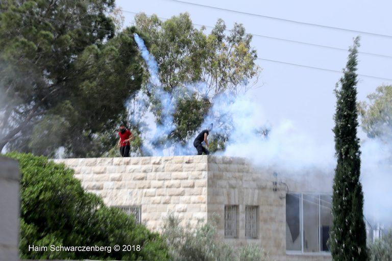 Nabi Saleh 20/04/2018 | FW7A7528