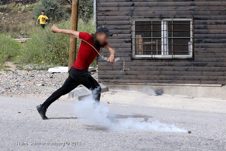 Nabi Saleh 20/04/2018 | FW7A7748