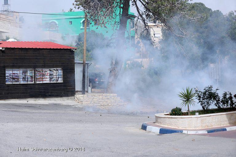Nabi Saleh 20/04/2018 | FW7A7858