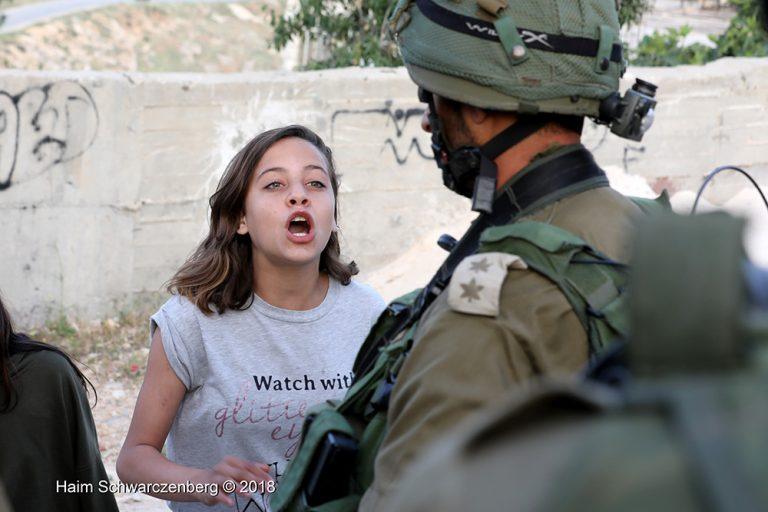 Nabi Saleh 20/04/2018 | FW7A8637